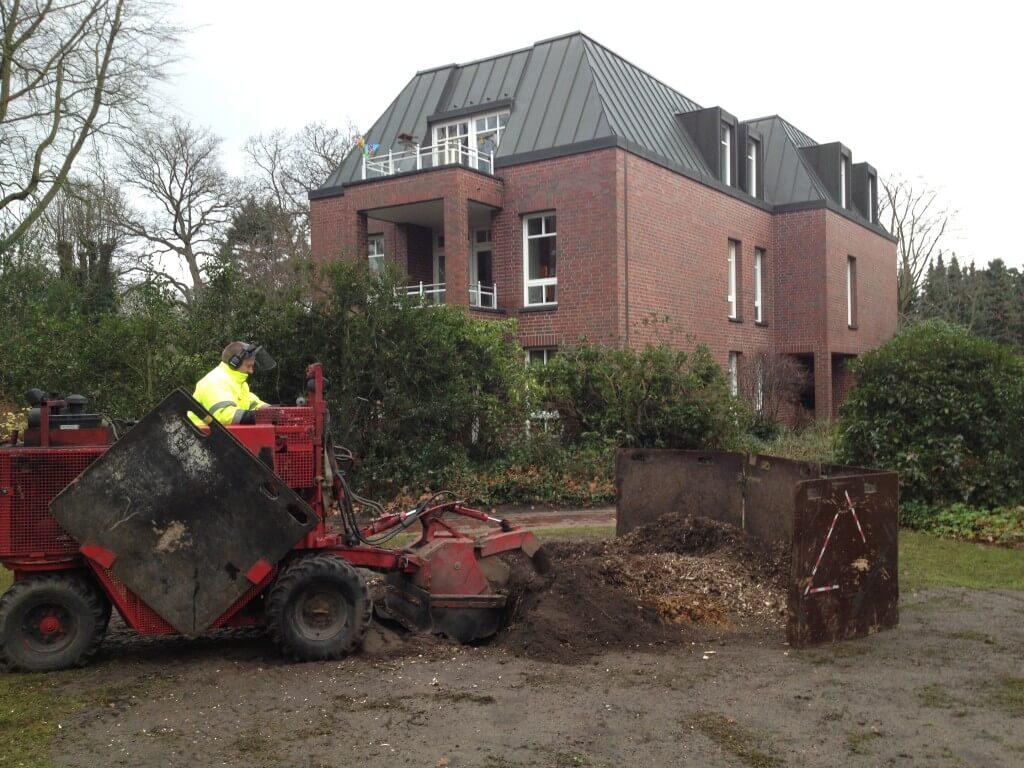Stubbenfr sen baumpflege und baumf llung in norddeutschland - Gartenbau kiel ...